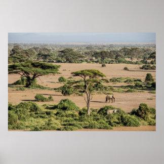 Poster Paysage africain avec l'éléphant