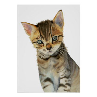 Poster Peinture d'aquarelle de chaton de Shorthair