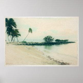 Poster Péninsule de palmier à la plage de Smathers, Key