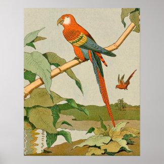 Poster Perroquet Rouge-et-Vert de jungle d'ara