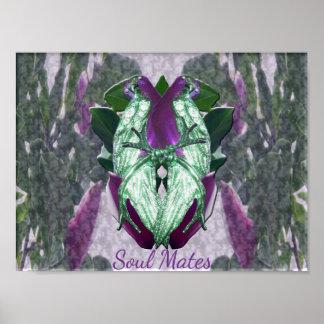 Poster Perroquets de magnolia d'Eminece