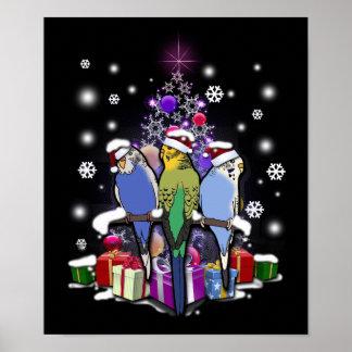 Poster Perruches avec le cadeau et les flocons de neige
