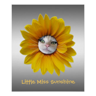 Poster Petite Mlle Sunshine Smiling Cat