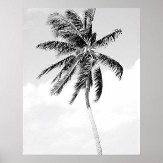 Poster Photo noire et blanche de plage de palmier