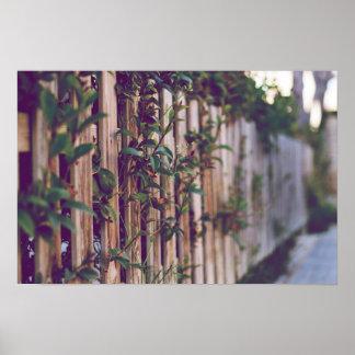 Poster Photographie détaille clôture avec des fleurs