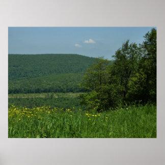 Poster Photographie d'été de la Pennsylvanie de montagnes