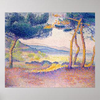 Poster Pins le long du rivage