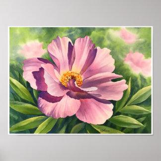 Poster Pivoine rose - aquarelle - affiche 12x16