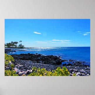 Poster Plage rocheuse tropicale d'île hawaïenne