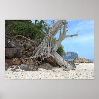 Poster Plage sablonneuse tropicale