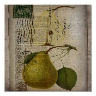 Poster poire botanique française vintage moderne de fruit