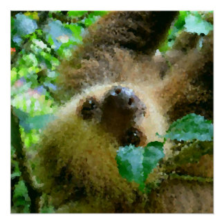 Poster Poly animaux - paresse