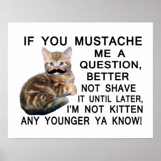 Poster Posez au chaton avec une moustache une question
