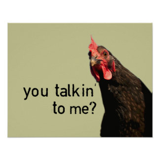 Poster Poulet drôle d'attitude - vous talkin à moi ?