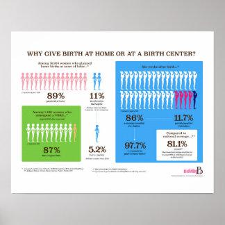 """Poster Pourquoi naissance à la maison Infographic 20"""" x"""