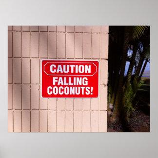 Poster Précaution - noix de coco en baisse !