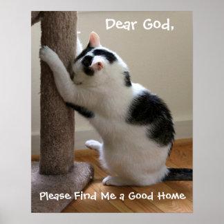Poster Prière de chat
