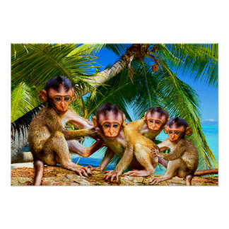 Poster Quatre petits singes