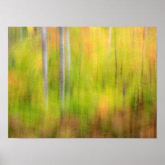 Poster Région boisée | Michigan, péninsule supérieure