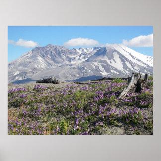 Poster Ressort du Mont Saint Helens