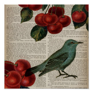 Poster rétro cerise rouge botanique d'oiseau français de