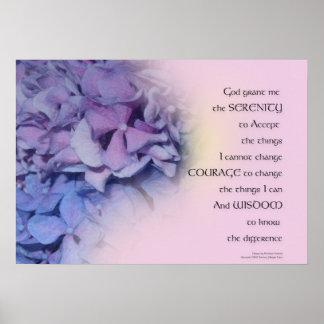 Poster Rose pourpre d'harmonie d'hortensias de prière de
