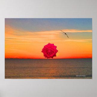 Poster Rose rouge au lever de soleil