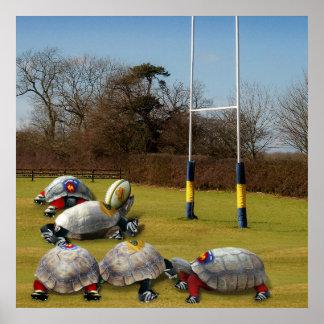 Poster Rugby de tortue