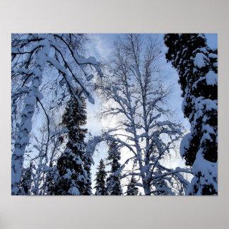 Poster Scène d'arbre d'hiver de Pôle Nord, Alaska