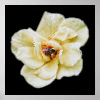 Poster S'est levée et l'abeille