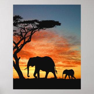 Poster Silhouette africaine colorée d'éléphant de coucher