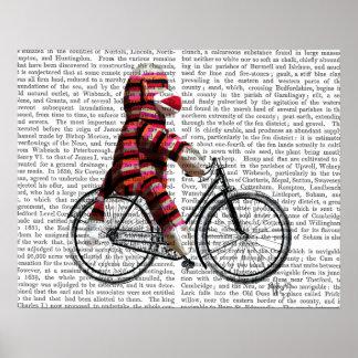Poster Singe de chaussette sur la bicyclette
