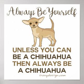 Poster Soyez toujours un chiwawa