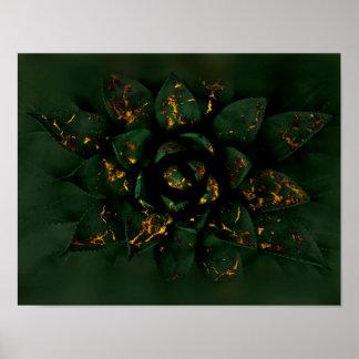 Poster Succulent de lueur d'or