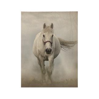 Poster Sur Bois Beau cheval blanc en brume
