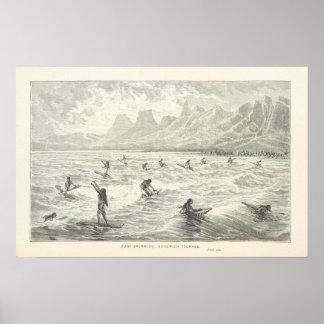Poster Surf-Natation, îles de sandwich