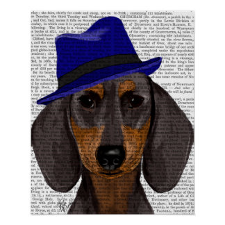 Poster Teckel avec Trilby bleu