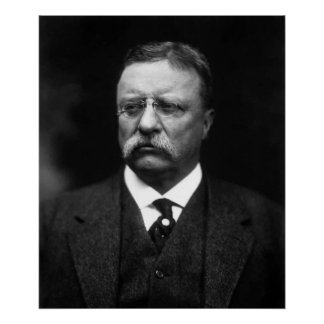 Poster Teddy Roosevelt