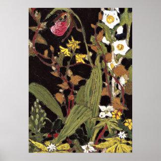 Poster Thomson - orchidées, parc d'algonquin
