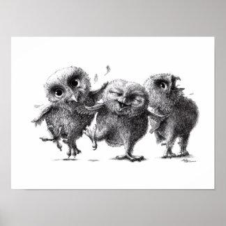 Poster Three Crazy Owls - Hiboux