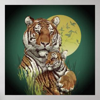 Poster Tigre avec l'affiche de CUB