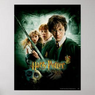 Poster Tir de groupe de ratière de Harry Potter Ron Hermi