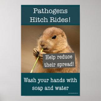 Poster Tours d'accroc d'agents pathogènes. Affiche de