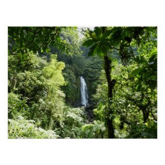 Poster Trafalgar tombe photographie tropicale de forêt