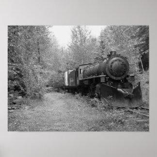 Poster Train retiré de vapeur