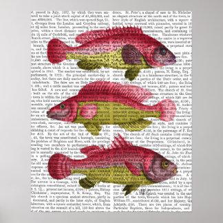 Poster Trio rouge et jaune de poissons d'imaginaire