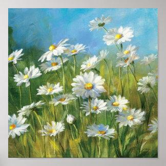Poster Un champ des marguerites blanches