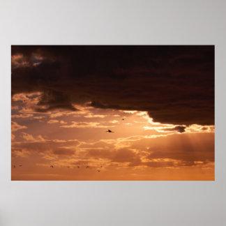 Poster Un coucher du soleil de marais - affiche