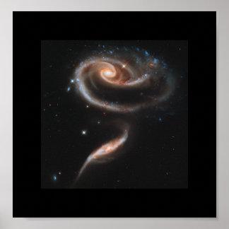Poster Un rose fait de galaxies - télescope spatial de