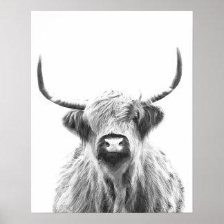 Poster Vache des montagnes noire et blanche